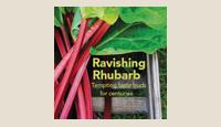 rhubarb-th