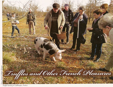 Southwestern France- Truffles And Other Pleasures_internal